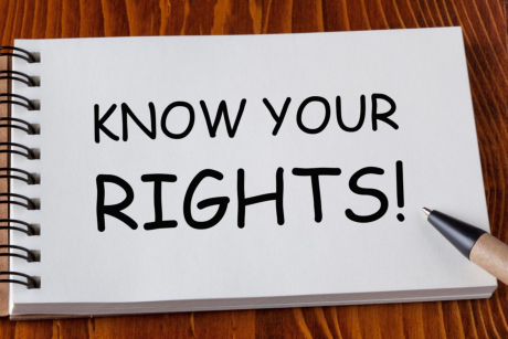 How to Lobby the Government to Advance Your Rights